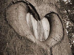 Nature heart