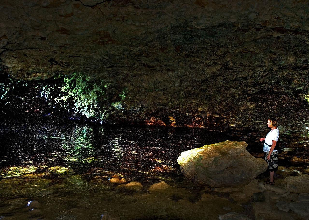 FileThe animal flower cave Barbados 6772542543jpg