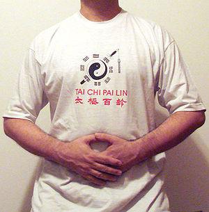Embracing Tai Chi