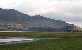 Sabana de Bogot  Wikipedia la enciclopedia libre