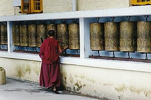 monk in Dharamsala. Himachal Pradesh, India