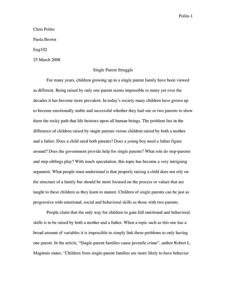 Rhetorical Analysis Sample Paper Andrea Yates Essay Papers Essay On