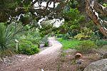 Quail botanical gardens.jpg