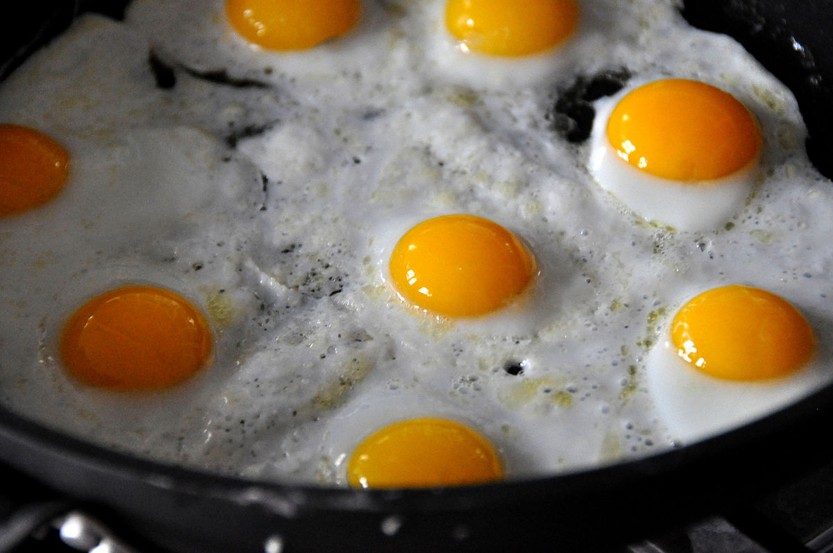 Fried egg  Wikipedia
