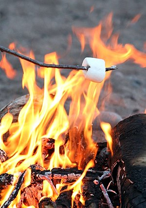 roasting a marshmallow