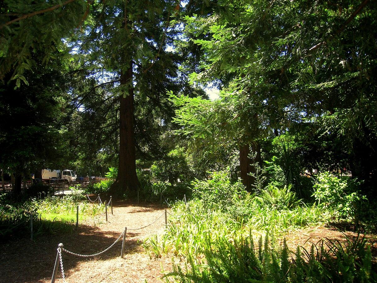 San Mateo Arboretum  Wikipedia