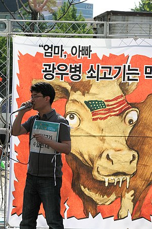 ROK Protest Against US Beef Agreement (US beef...