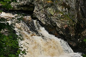 English: Salmon Leap at the Falls of Shin How ...