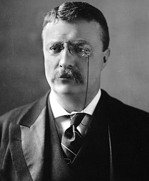 English: Theodore Roosevelt, circa 1902
