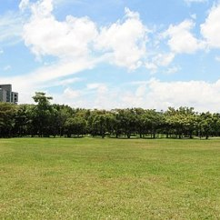The Living Room With Sky Bar %e4%b8%80%e4%bc%91 Formal Sets For Sale Taipei Wikipedia Da An Park