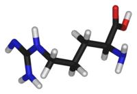 Structure of Arginine