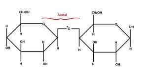 Structural BiochemistryCarbohydratesAldoses  Wikibooks