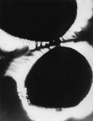 Kirlian photo of two fingertips
