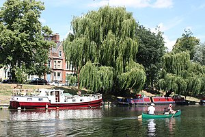 River Cam, Cambridge, Cambridgeshire, England,...