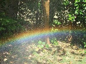 Self made rainbow, made in home garden.