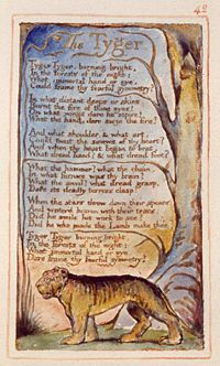 Lastra con la poesia The Tyger di William Blake