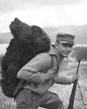 English: Bear Hunter on Kodiak. Close view of ...