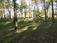 Effigy Mounds Iowa Sny Magill.JPG