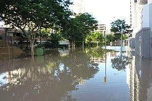 Brisbane City Floods