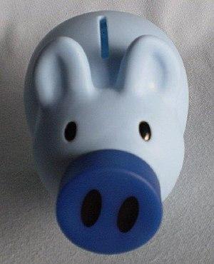 English: picture of piggy palz piggy bank
