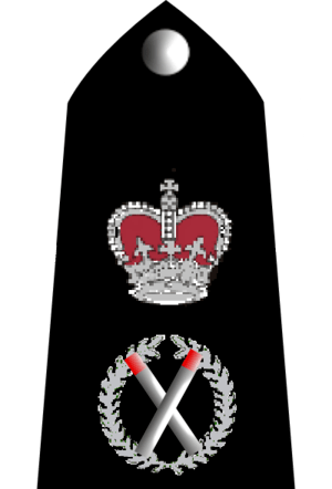 UK Police Chief Constable rank markings