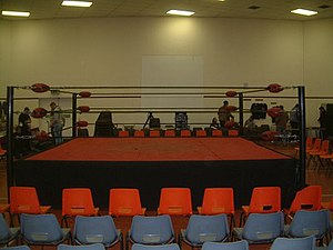 Slam Wrestling Training Ring