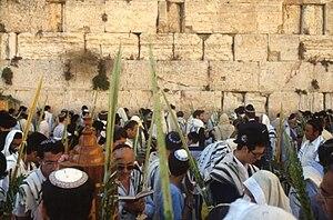 English: Pray with lulav during Sukkot at the ...