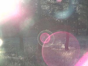 Lens flare as seen in a TrendNet TV-IP100, whi...