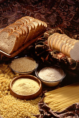 grain products: bread, rice, cornmeal, and pasta