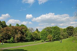 Rombergpark-100516-13150-Park