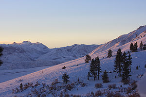 English: Pink sunrise on snow, Wheeler Crest a...