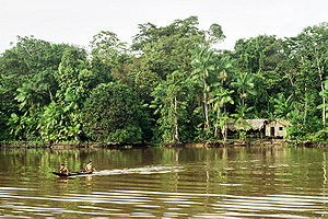 Indigenous in Amazon Rainforest.