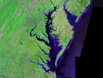 The Chesapeake Bay – Landsat photo