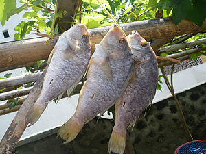 English: Dried fish, Bajo Lombok, Indonesia.