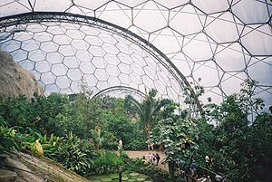 English: Inside the Humid Tropics Biome at the...