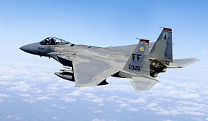 Capt. Matt Bruckner, an F-15 Eagle pilot assig...