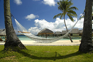 Hammock - Polynesia.