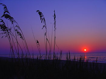 Myrtle Beach Sunrise1