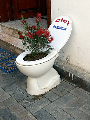 English: Antalya ( Turkey ). Toilet seat used ...