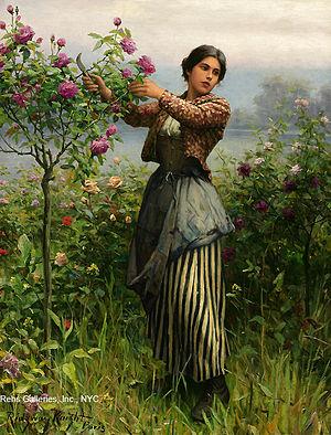 English: Cutting Roses