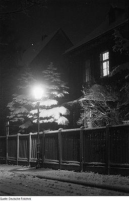 Fotothek df roe-neg 0000211 003 Mit Schnee bedeckte Bäume