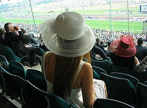 Woman's hat in Melbourne Cup. During the day, ...