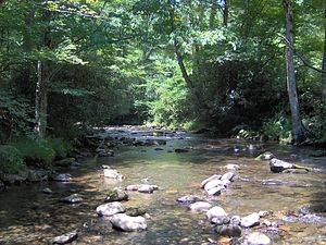 Bradley Fork at the Smokemont Campground in th...