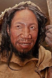 Homo Cro Magnon : magnon, Early, European, Modern, Humans, Wikipedia
