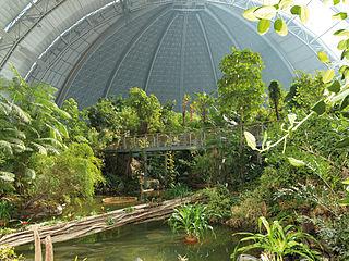 Im Tropical Islands Resort (Bild: Tropical Islands Resort)