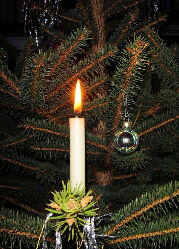 FileCandle on Christmas tree 3jpg Wikipedia