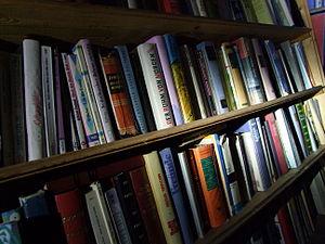 Freies Tauschbücherregal am Rhein