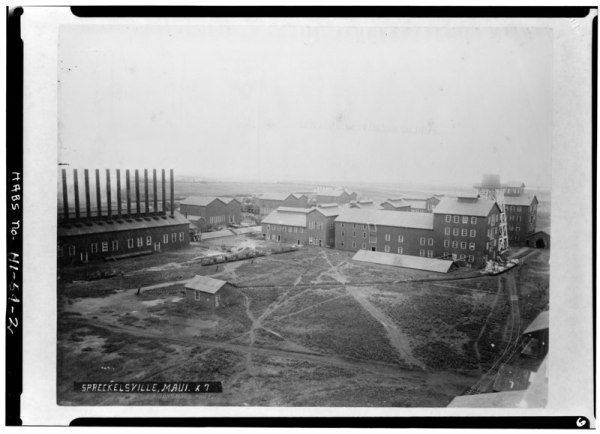 FileBIRDS EYE VIEW OF SUGAR MILL photograph 1890