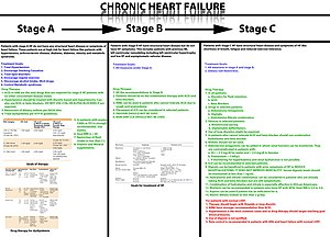 English: Treatment Guidelines for Chronic Hear...