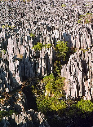 Tsingy de Bemaraha Strict Nature Reserve in Ma...